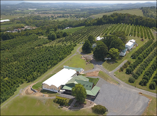Showalter's Orchard